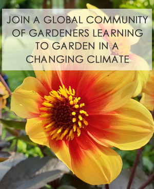 Take the Climate Gardens survey