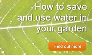 Read posts about how to save and use water in your garden