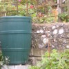 Water butts to beat hose pipe ban