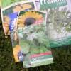 Grow your own veg seeds