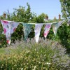 National Allotments Week inspires veg plot party