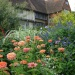 Late Summer Beauty at Great Dixter