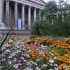 Kew Australian walkabout at British Museum