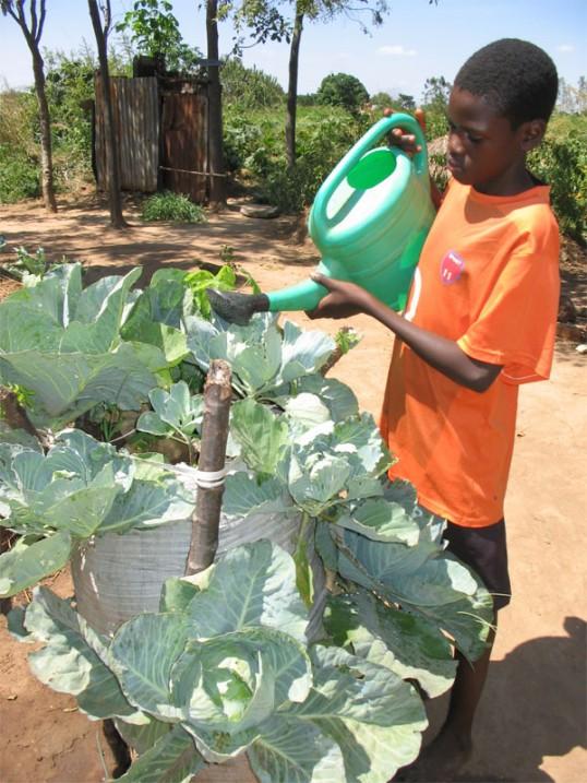 olinga-bag-garden