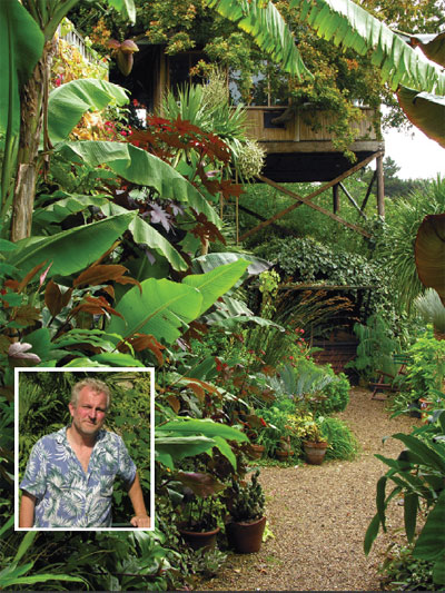 Tropical Plants For Summer Gardening My Climate Change