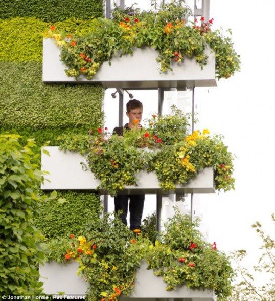 B Q Vertical Garden Goes Sky High My Climate Change Garden
