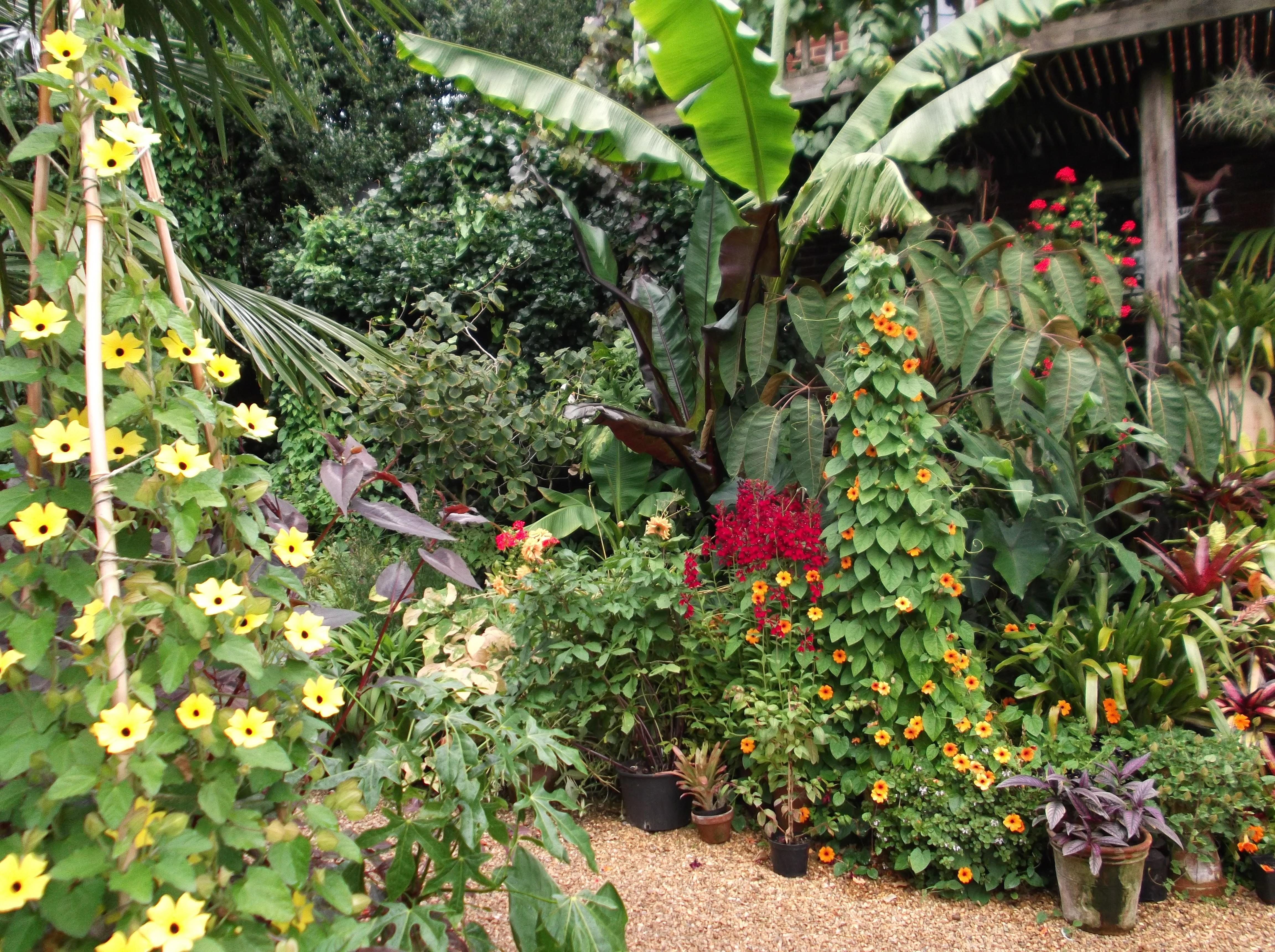 Sunshine Boost For September Uk Gardens My Climate